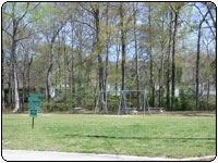 Creekview Neighborhood park, image of a swingset with a forest in the background